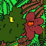 小鳥とラフレシア