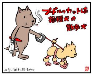 プードルカットの雑種犬を散歩させる犬